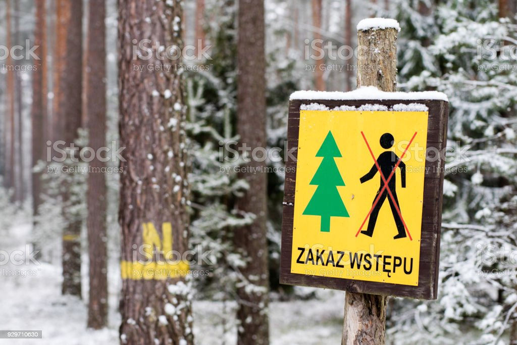 Marking of forestry service in the field. A sign prohibiting entry into the forest on a seed bed. Winter season. stock photo