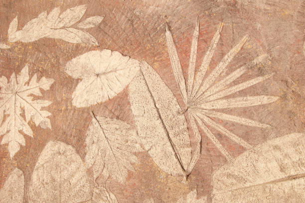 marks of leaf on the concrete - fossil stock photos and pictures