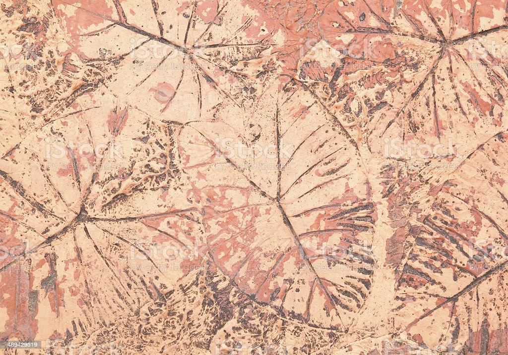 marks of leaf stock photo