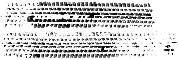 Marks of two tires on white background  tire track stock pictures, royalty-free photos & images