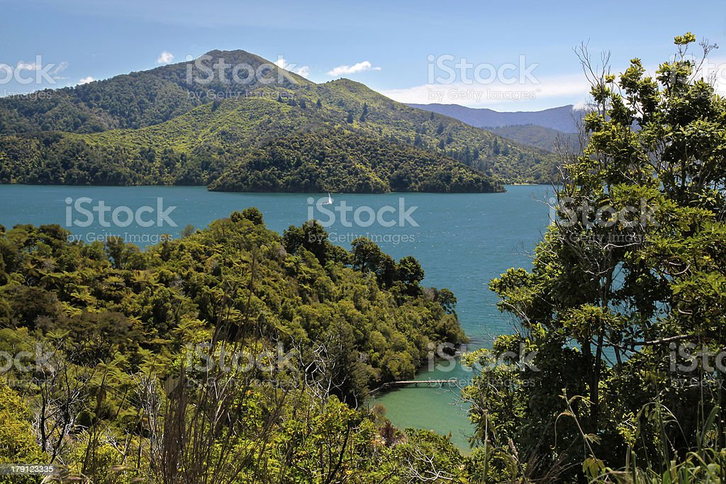 Marlborough Sounds royalty-free stock photo