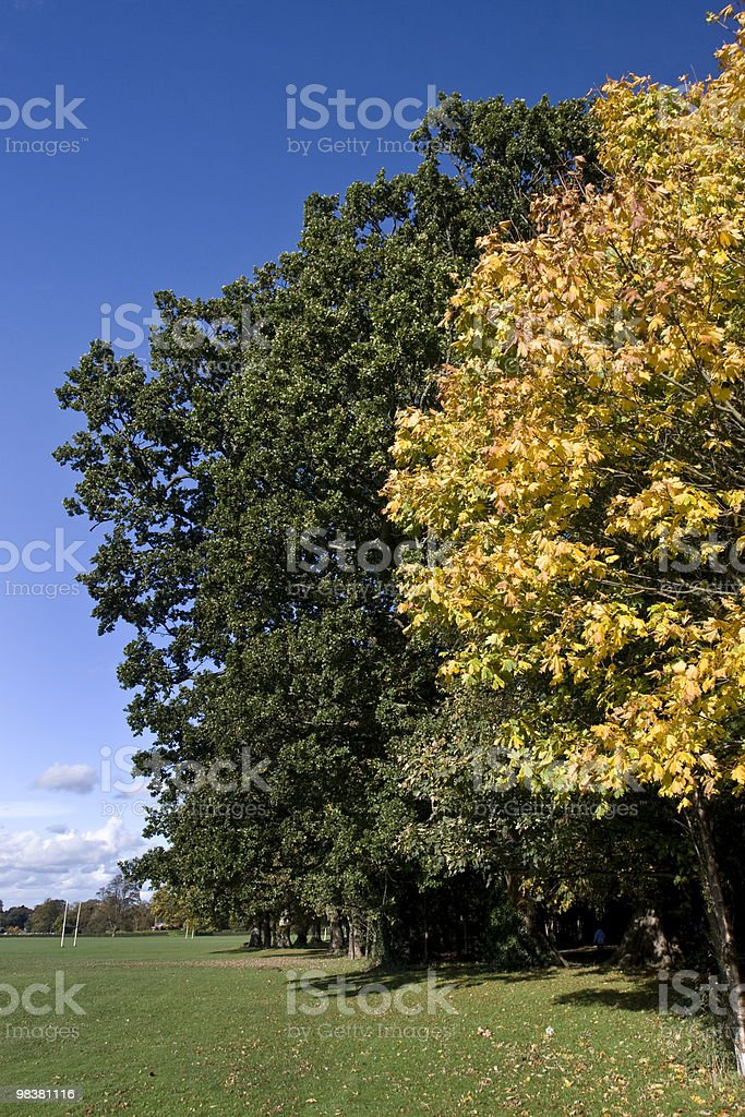 Marley Park - Dublin royalty-free stock photo
