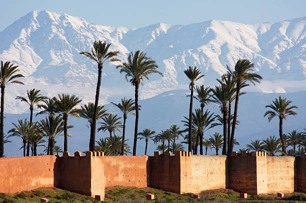 marrakech, neige palmiers ramparts... stock photo