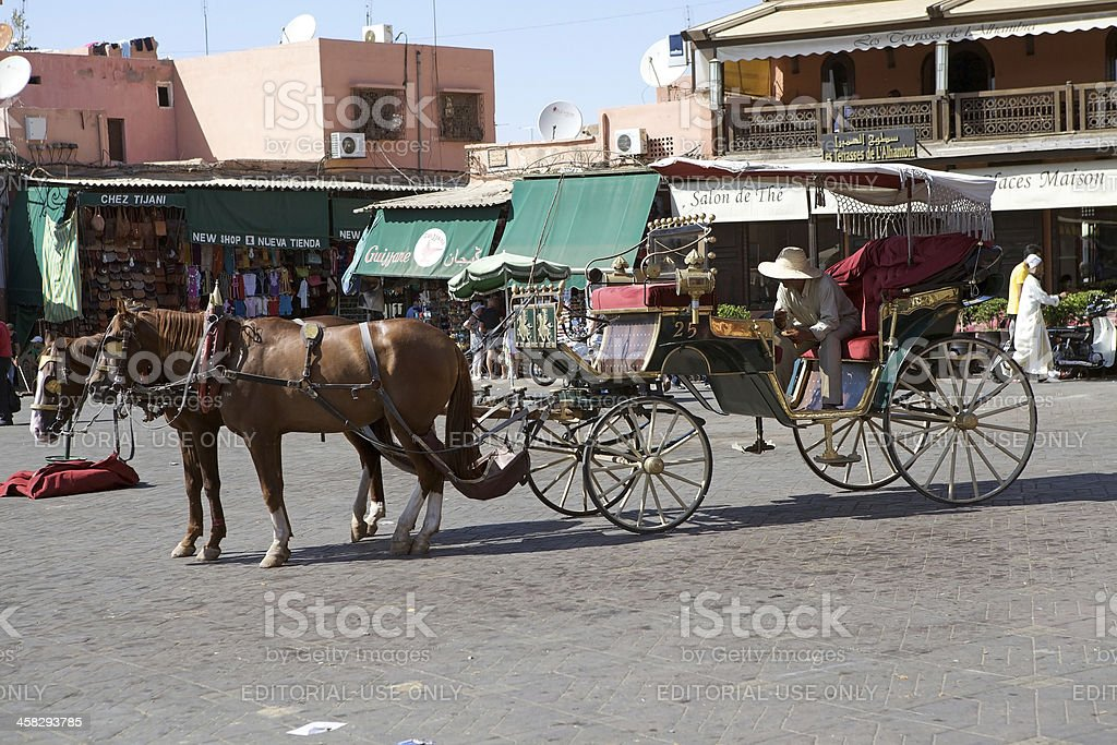 Marrakesh horses and carriage royalty-free stock photo