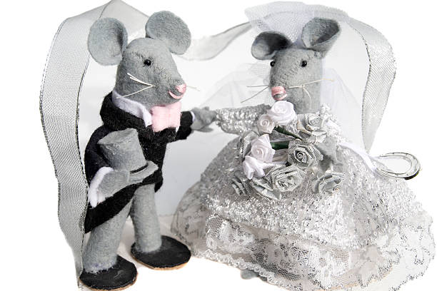 Marriage Mice stock photo