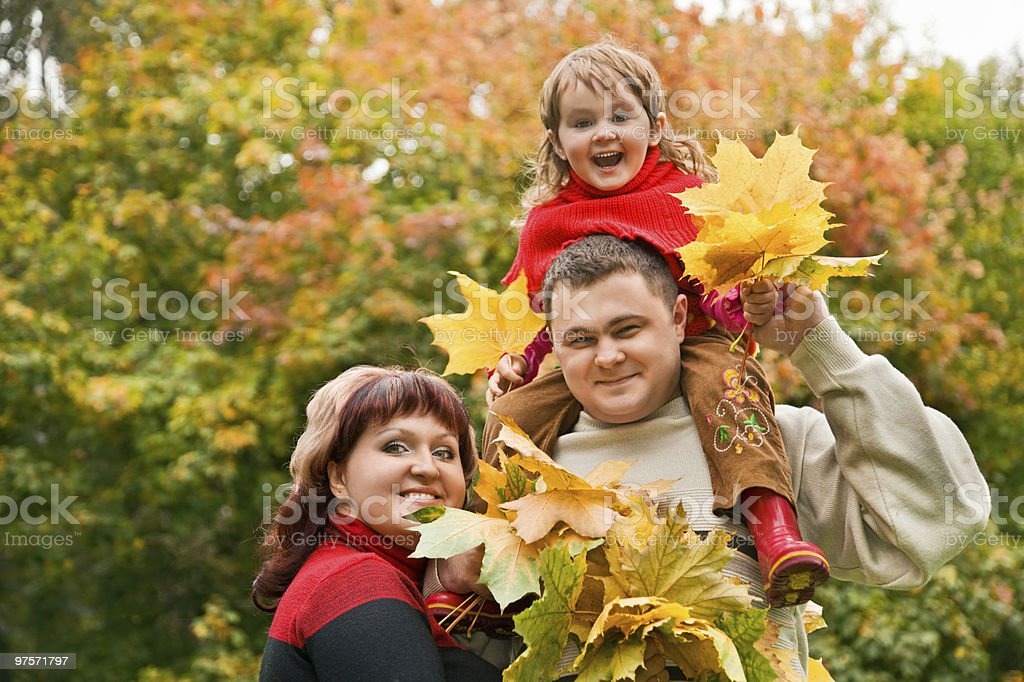 Married couple and little girl collect maple leafs royalty-free stock photo