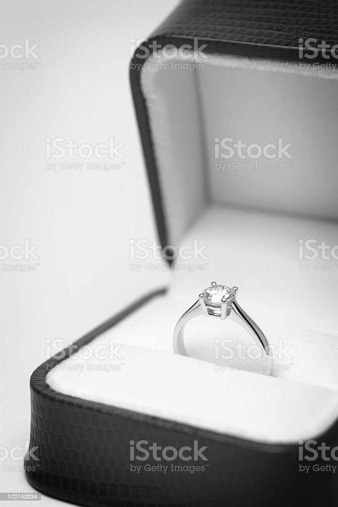 Marry Me? royalty-free stock photo