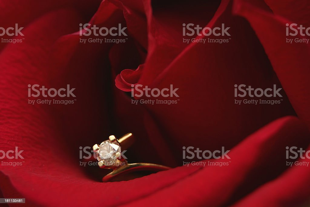 Marry Me (IV) royalty-free stock photo