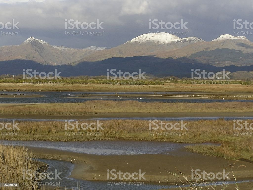 Marsh and Mountain royalty-free stock photo