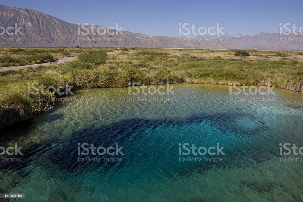 Marsh at Cuatro Cienegas Coahuila stock photo
