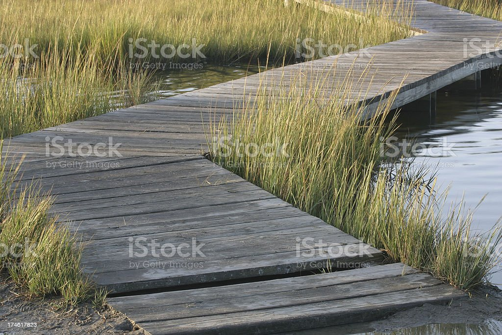 marsh boardwalk royalty-free stock photo