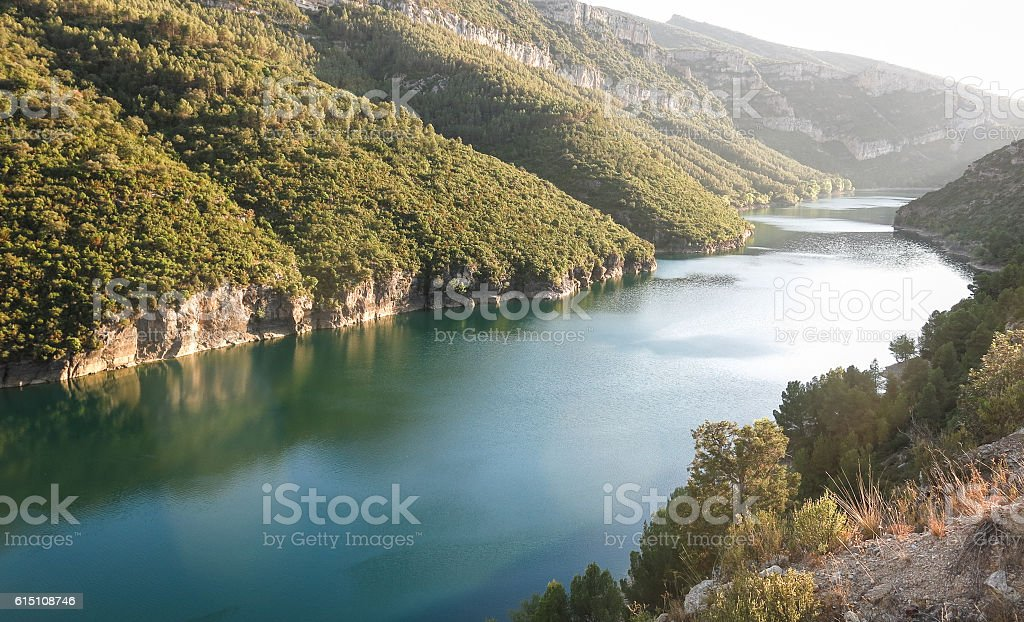 Marsh Camarasa, Catalonia province, Spain stock photo