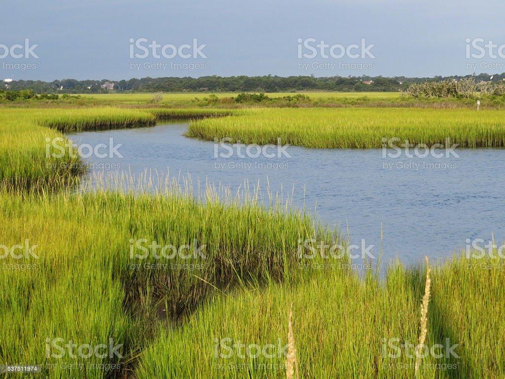 Marsh In Eastern North Carolina stock photo