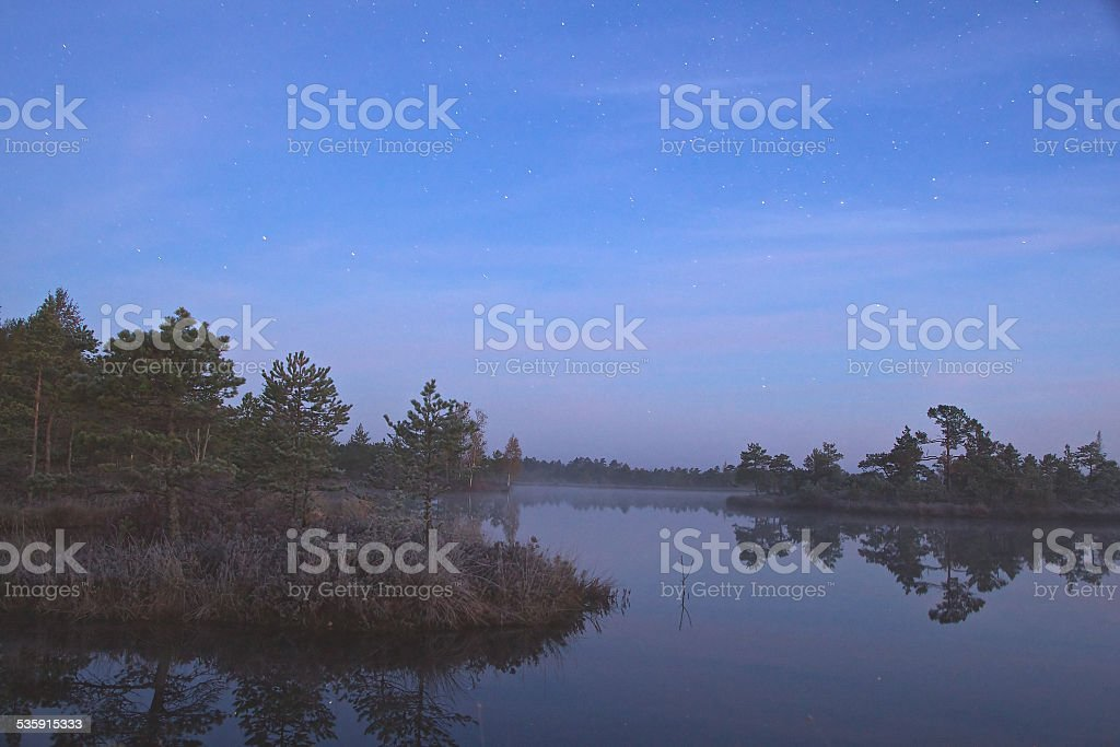 Marsh lake stock photo