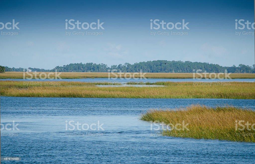 Marsh Landscape stock photo