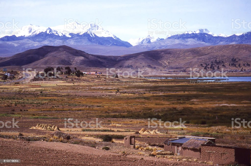 Marshes along edge of Lake Titicaca in Bolivia with the snow-capped Andes Mountains in the background stock photo