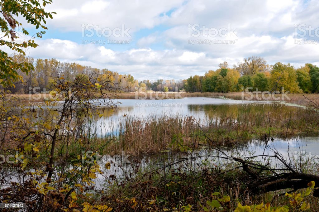 Marshes and Forests of Refuge in Eagan stock photo