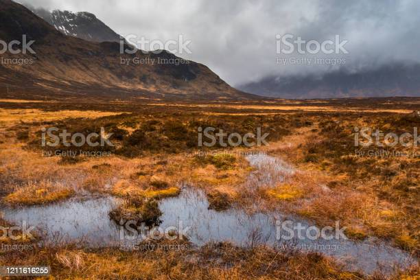 Photo of Marshes in the valley near Buachaille Etive Mor Mountain on a moody day, Glencoe, Scotland