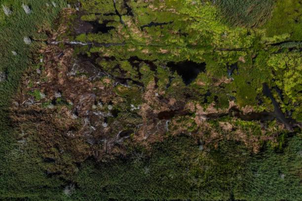 Marshland auf Cape Cod, Massachusetts (USA) von oben erobert – Foto