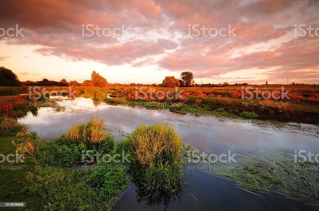 Marshland Sunset stock photo