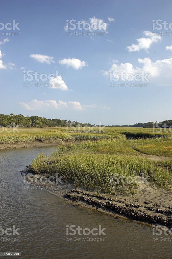 Marshlands of the Georgia Coast stock photo