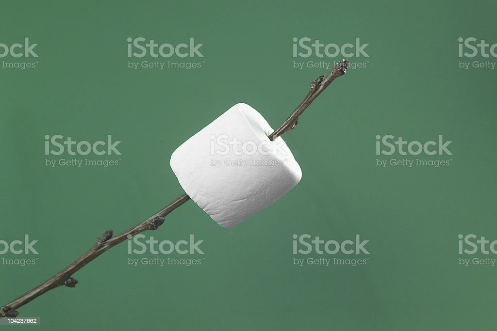 Marshmallow on a twig. royalty-free stock photo