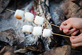 Marshmallows on skewers over the fire