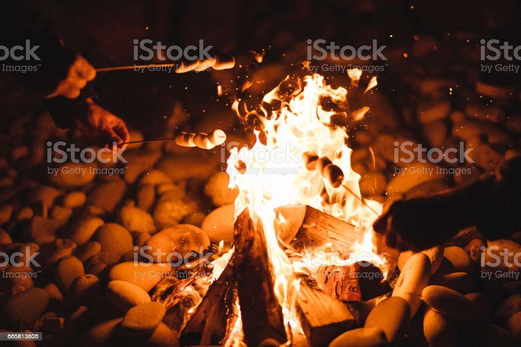 Marshmallows roasting over a campfire stock photo