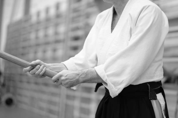 Kampfkunst Aikido – Foto