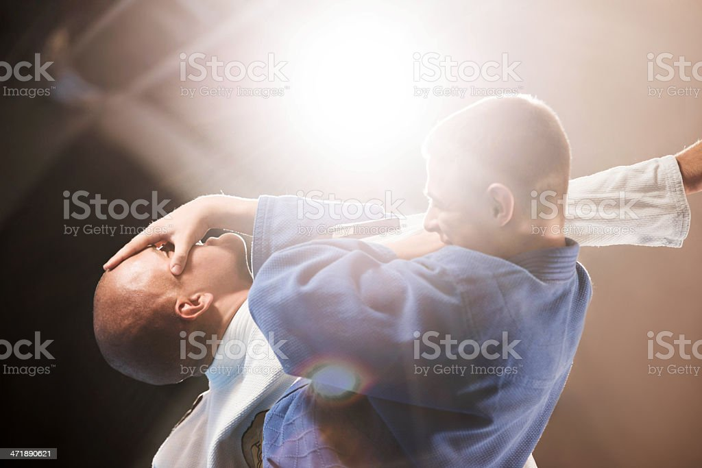 Martial artist demonstrating self-defense. royalty-free stock photo