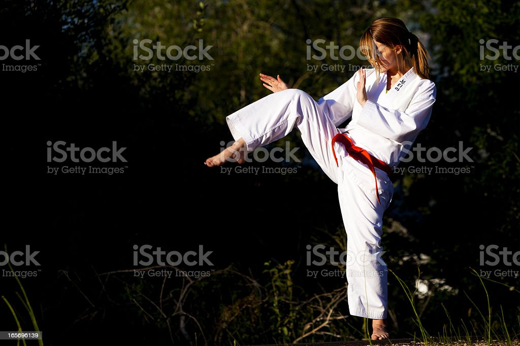 Martial Arts Dynamic Position stock photo