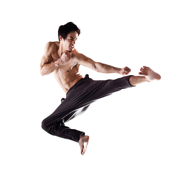 Martial Arts Fighter Isolated on White stock photo
