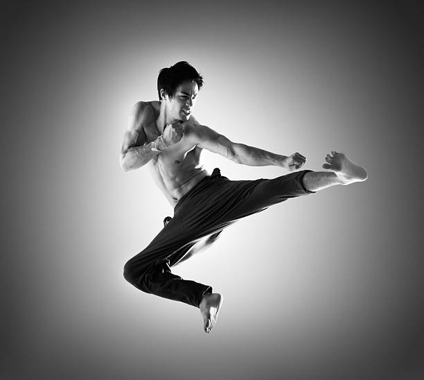 Martial Arts Fighter stock photo