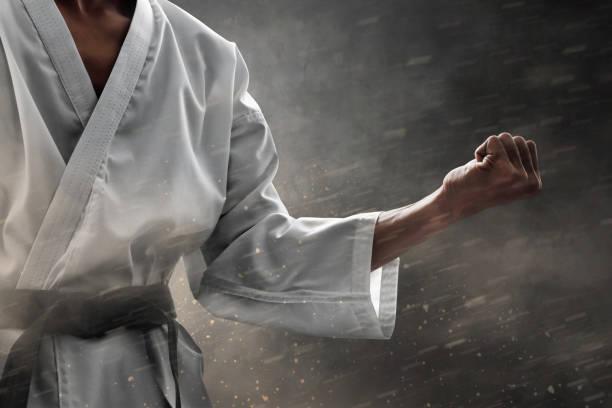 luchador de artes marciales - kárate fotografías e imágenes de stock