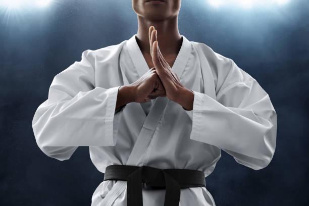 combattant d'arts martiaux - arts martiaux photos et images de collection