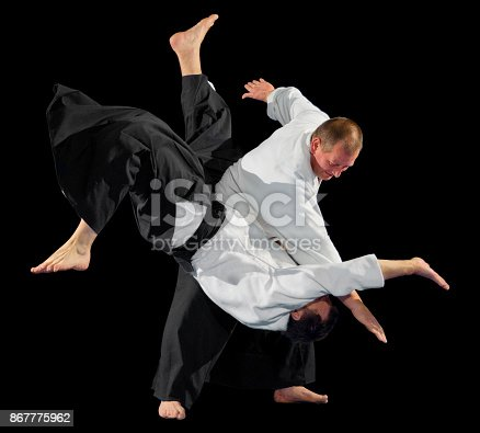 istock Martial arts fighters isolated 867775962