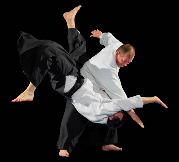 Martial arts fighters isolated stock photo