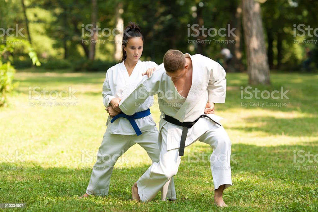 Martial Arts Fighters stock photo