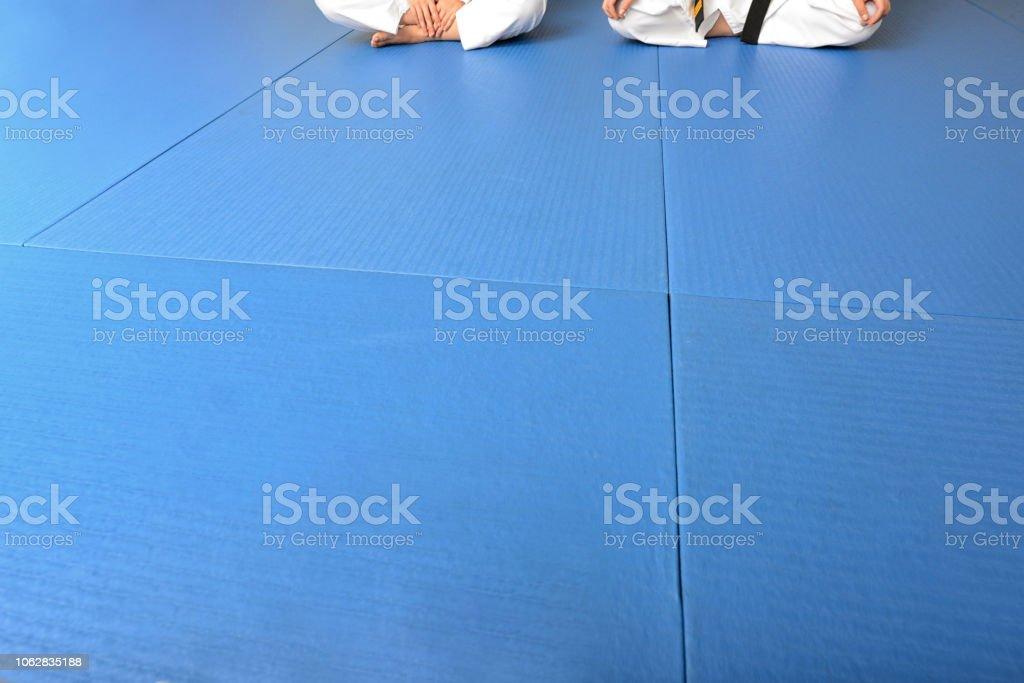 Martial Arts Floor stock photo