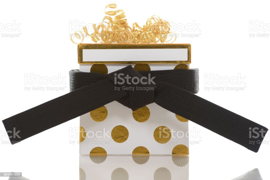 Martial Arts Gift royalty-free stock photo