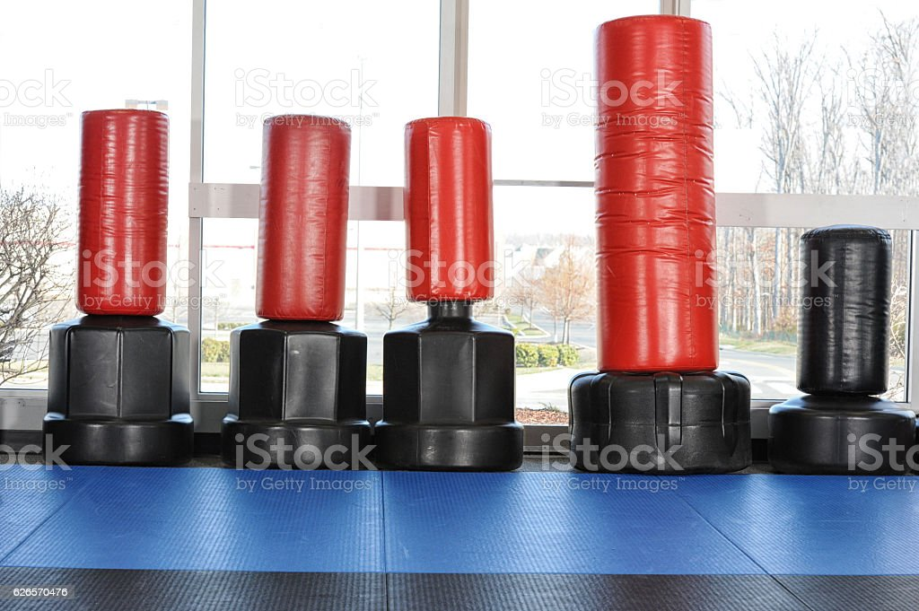 Martial Arts Gym Water filled punching/kicking targets in a martial arts school. Combat Sport Stock Photo