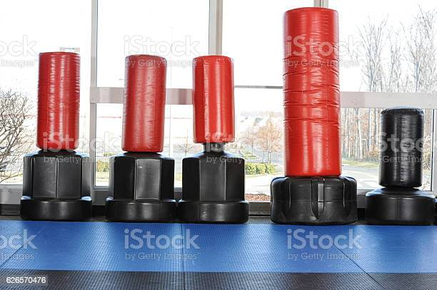 Martial Arts Gym Stock Photo - Download Image Now