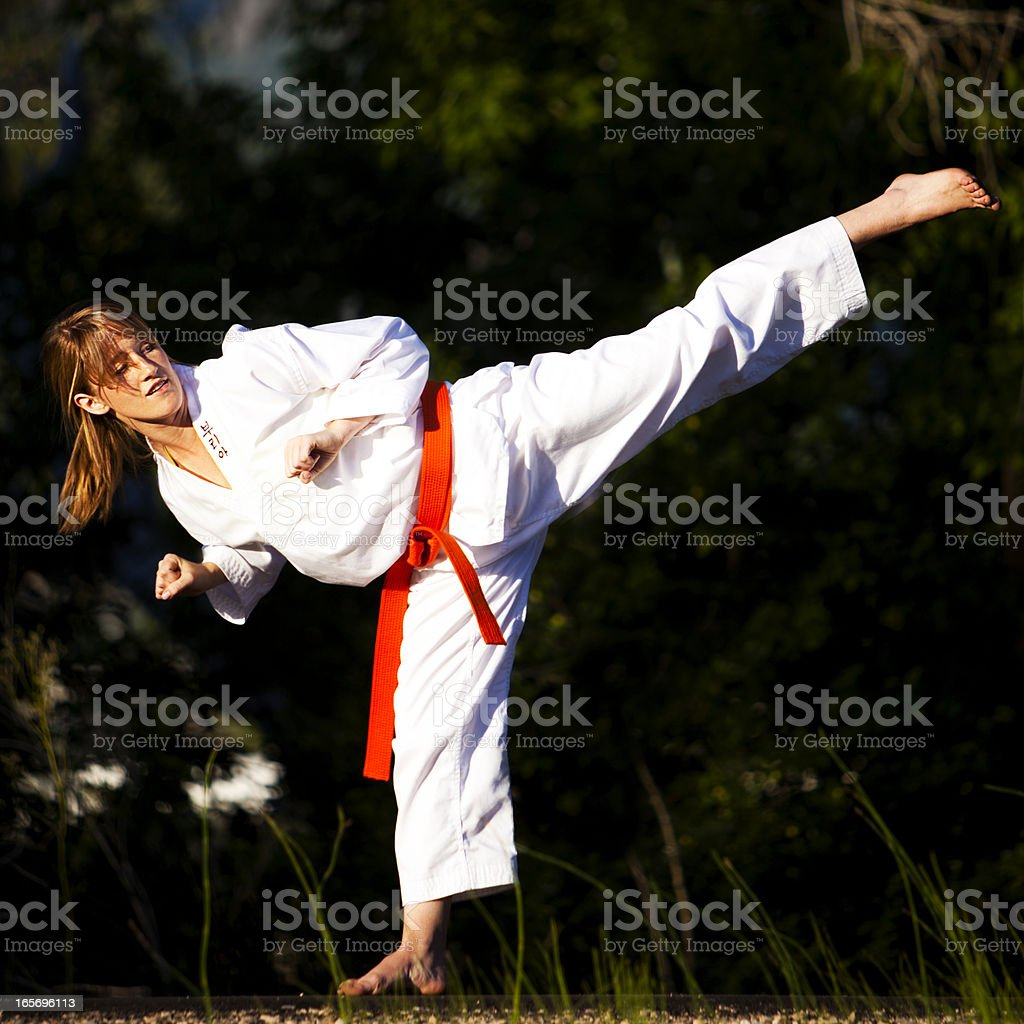 Martial Arts High Kick royalty-free stock photo