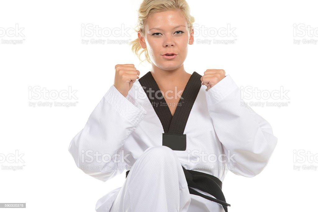 Martial Arts Moments royaltyfri bildbanksbilder