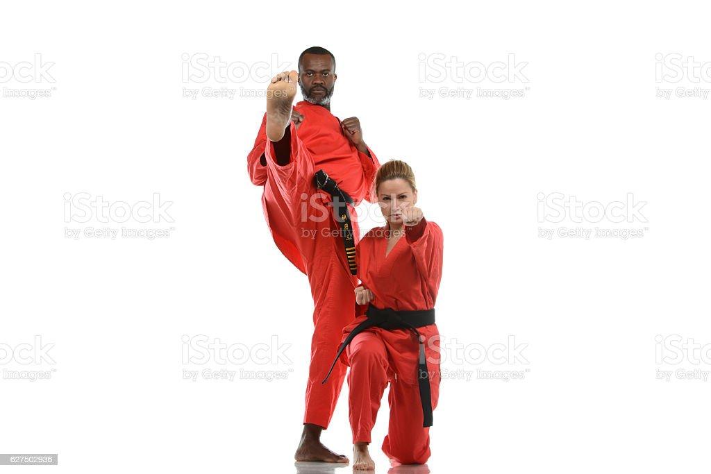 Martial Arts Partners stock photo