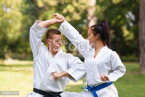 istock Martial Arts Practice 516231147