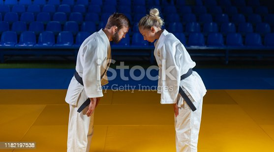 istock Martial arts. Sparing Portners. Sport man and woman greet each other before a fight in the sports hall 1182197538