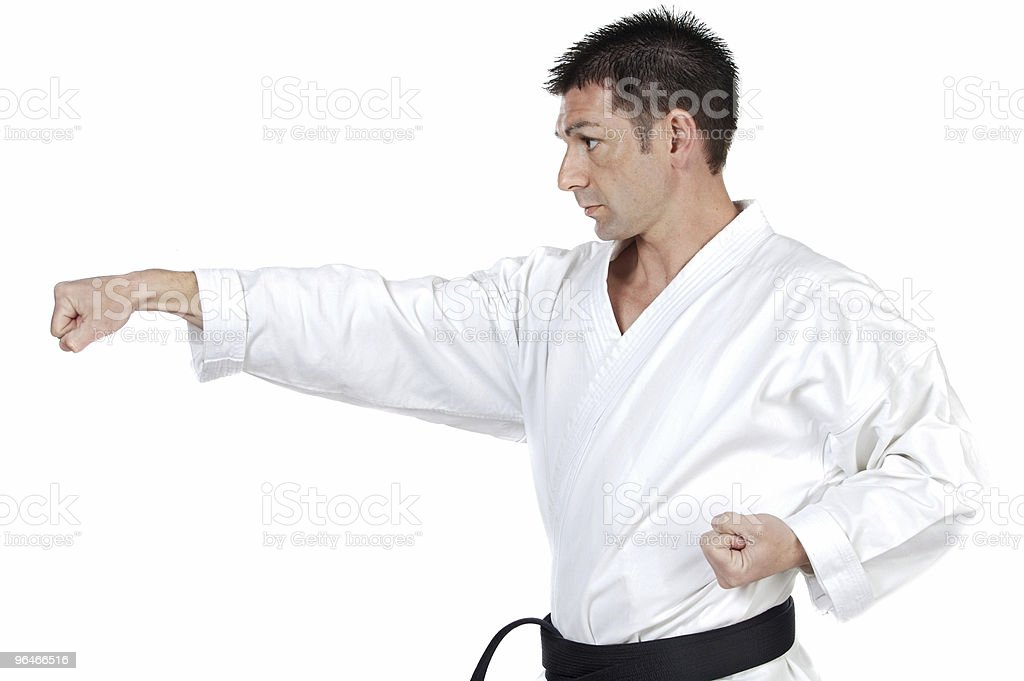 Martial arts stance royalty-free stock photo