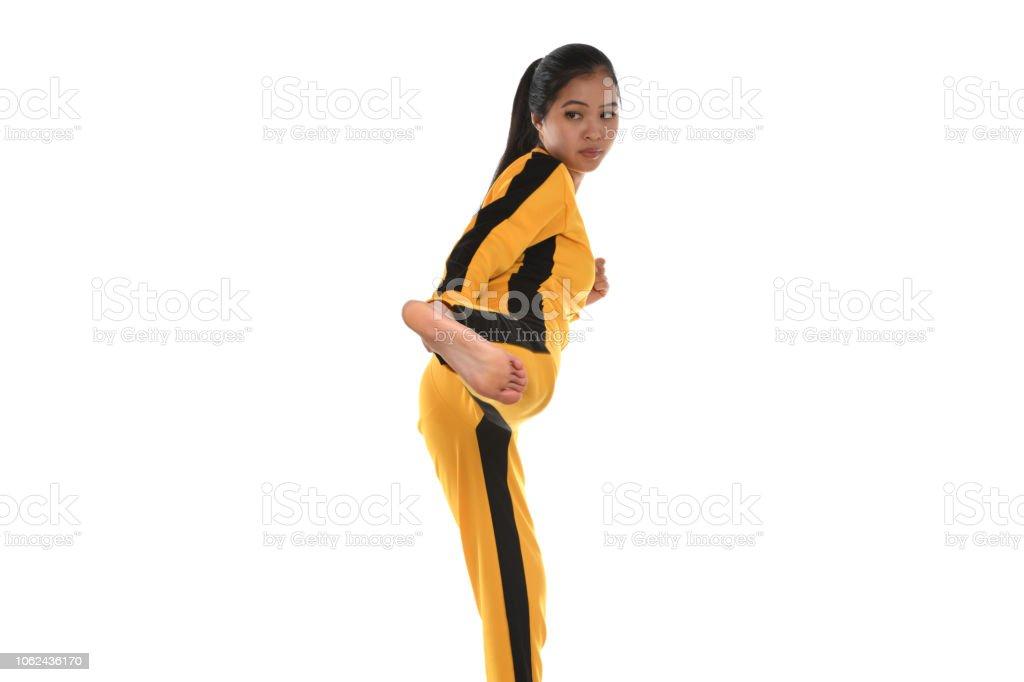 Martial Arts Stike stock photo