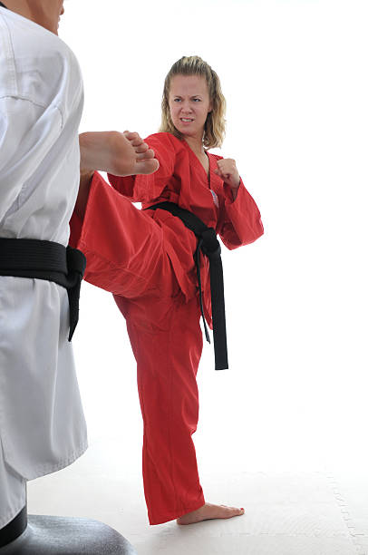 Martial Arts target training stock photo